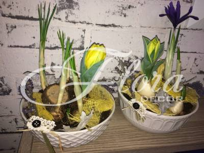 Пролетна арнжировка